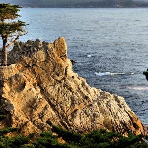 The Lone Cypress at Sunset on 17-Mile Drive in Pebble Beach, California - Encircle Photos