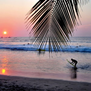 Surfing at Sunset on Playa Tamarindo, Costa Rica - Encircle Photos
