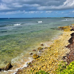 Calcified Coral Shoreline in Bodden Town, Grand Cayman - Encircle Photos