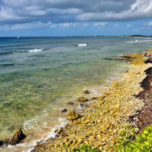 Calcified Coral Shoreline in Bodden Town, Grand Cayman - Encircle Photos