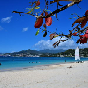 Caribbean Paradise at Grand Anse Beach in St. George's, Grenada - Encircle Photos