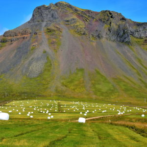 Bales of Wrapped Hay on Snæfellsnes Peninsula, Iceland - Encircle Photos