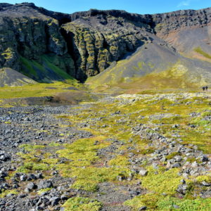 Rauðfeldsgjá Mountain Fissure on Snæfellsnes Peninsula, Iceland - Encircle Photos