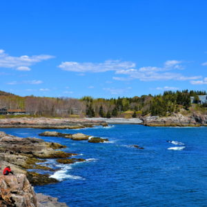 Schooner Head from Overlook in Acadia National Park, Maine - Encircle Photos