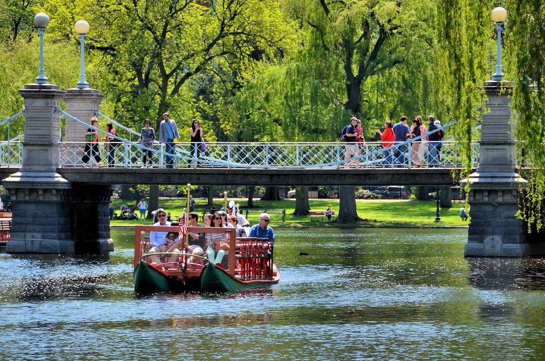 Swan Boat Ride In Boston Public Garden In Boston