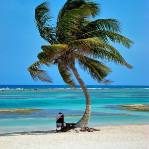 Man Sitting under Palm Tree for a Perfect Afternoon at Costa Maya, Mexico - Encircle Photos