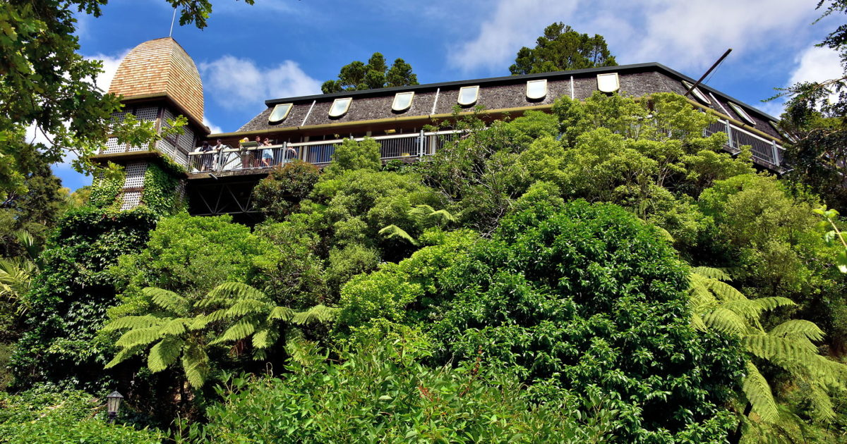 Treehouse At Botanic Garden In Wellington New Zealand Encircle