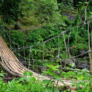 Bamboo Footbridge at Dark View Falls in Chateaubelair, Saint Vincent - Encircle Photos