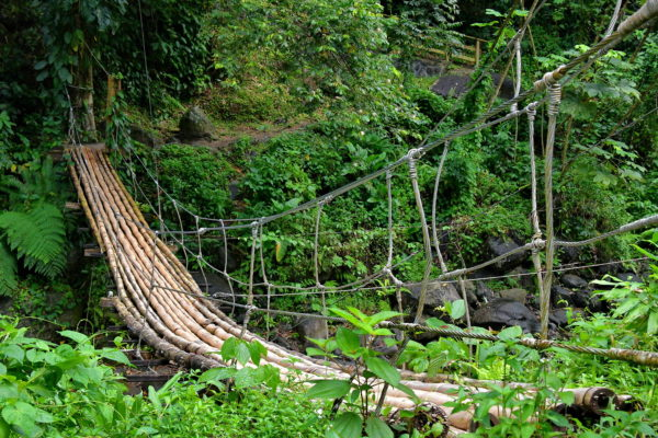 Bamboo Footbridge at Dark View Falls in Chateaubelair, Saint Vincent - Encircle Photos