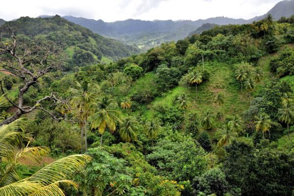 Mountain Ridges and Valleys in St. Patrick Parish, Saint Vincent - Encircle Photos